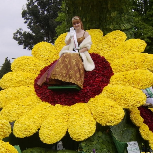 of the best flower festivals in the world, Beautiful flower