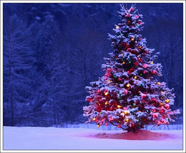 10-Christmas