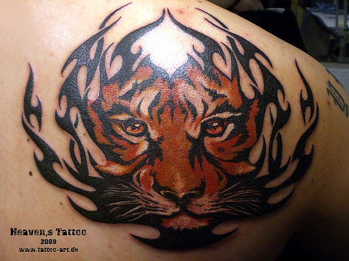 Tiger Tribal Tattoos-1