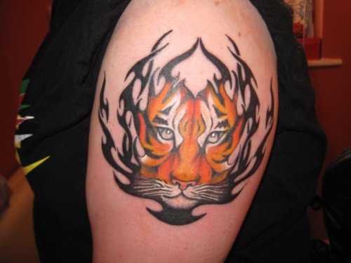 Tiger Tribal Tattoos-4