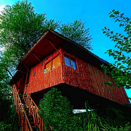 image source: thetreehouseresort.in
